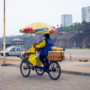 Street vendor, Magdalena del Mar district, Lima, 2017. / Vendeur ambulant, bord de mer, quartier Magdalena del Mar, Lima, 2017.