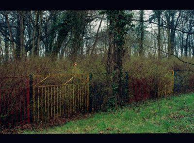Study of Denise Grünstein's Figure in Landscape